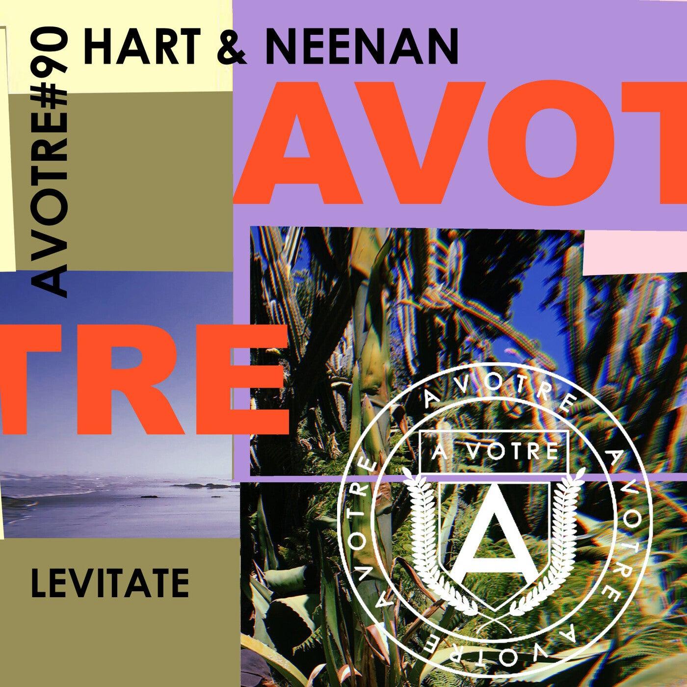 Levitate (Original Mix)