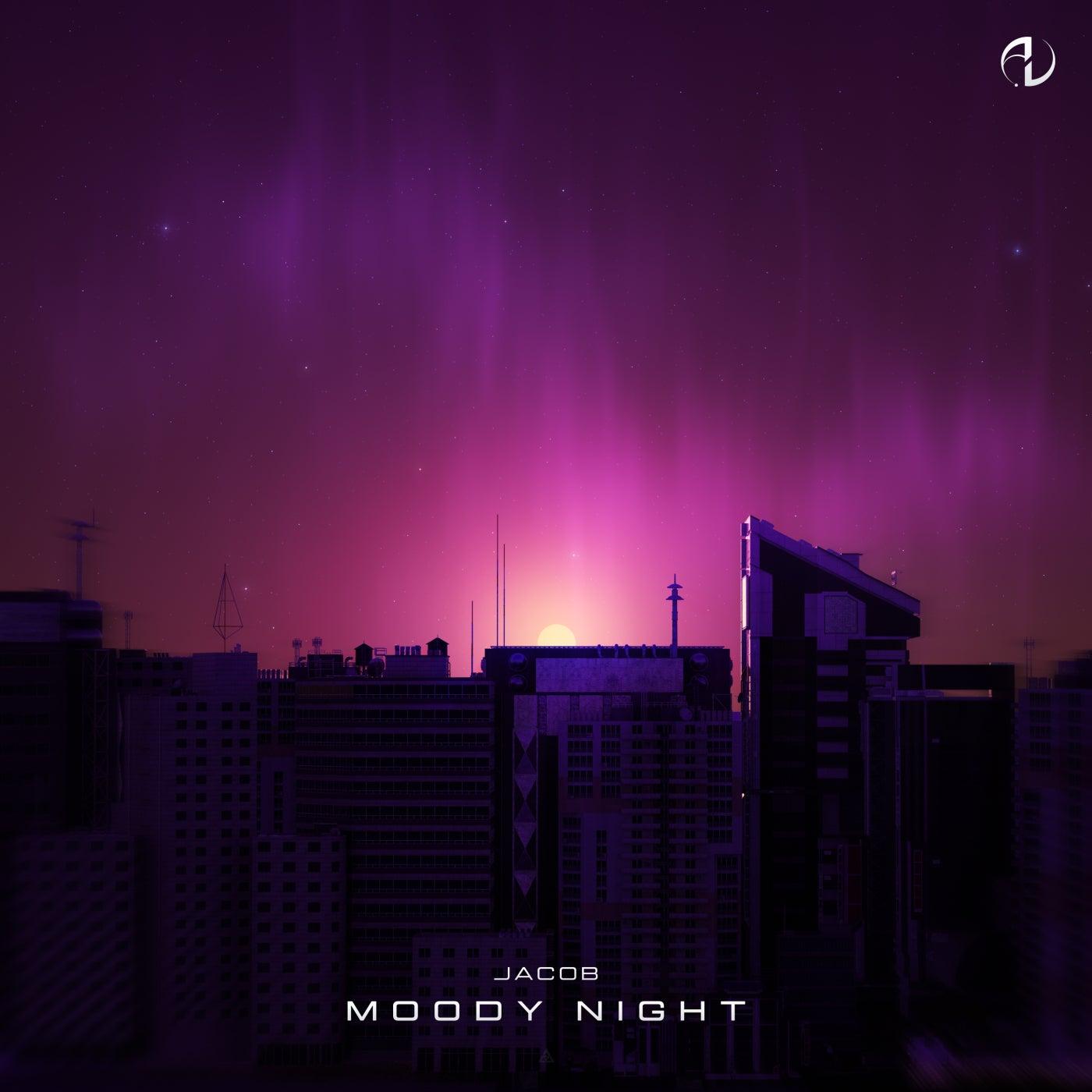 Moody Night (Original Mix)