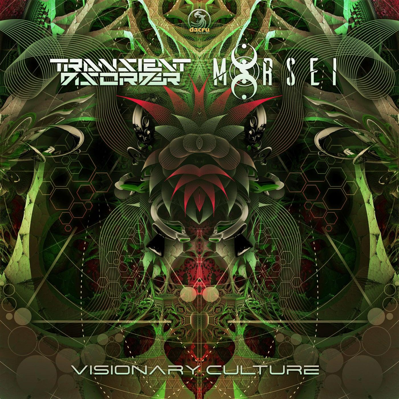 Visionary Culture (Original Mix)