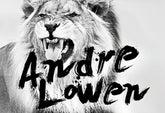Andre Lowen