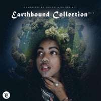 VA – Earthbound Collection, Vol. 2Earthbound Collection, Vol. 2 (Compiled by Salvo Migliorini)