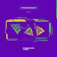 VA - Future Sound Vol. 3 [FSOE]