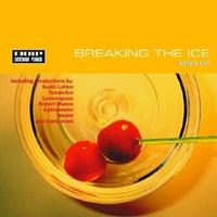VA - Breaking the Ice Edition 2 [Mole Listening Pearls]