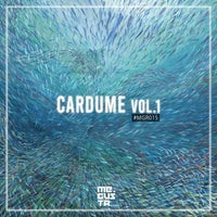 VA - Cardume Vol.1 [Me Gusta Records]
