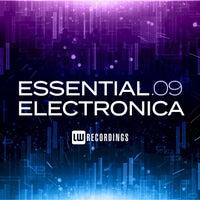 VA - Essential Electronica, Vol. 09 [LW Recordings]