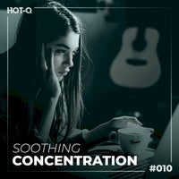 VA - Soothing Concentration 010 [LW Recordings]