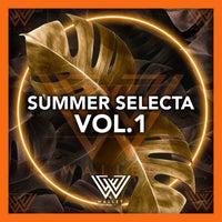 VA - Summer Selecta Vol. 1 [Wallet Music]