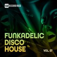 VA - Funkadelic Disco House, 07 - (LW Recordings)