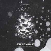 VA - Ensemble [SAISONSVA02] [FLAC]