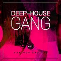 VA - Deep-House Gang, Vol. 2 [WARRIORSDAY239]