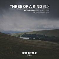 VA - Three of a Kind 08 [3rd Avenue]