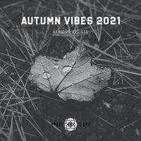 VA - Autumn Vibes 2021 [ALMVA092021] [FLAC]
