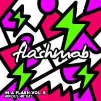 VA - In A Flash, Vol. 5 [FMR190]