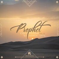 VA - Prophet Collection, Vol. 8 by Manuel Defil [CDA014]