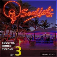 VA – This Is Soulful House, Vol.3 – (Irma Records)