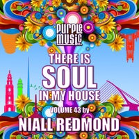 VA - Niall Redmond Presents There is Soul in My House, Vol. 43 - (Purple Music)