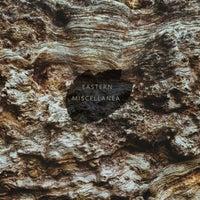 VA - Eastern Miscellanea, Vol. 2 [Tarr Records]