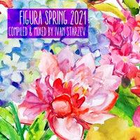 VA - Figura Spring 2021 [FIGURACOMP010]