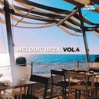 VA - Melodic Ibiza Vol. 4 [RI009] [FLAC]