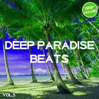 VA - Deep Paradise Beats, Vol. 5 [Tronic Soundz]