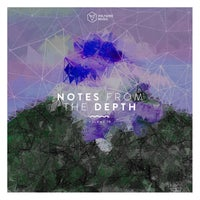 VA - Notes from the Depth, Vol. 19 [VOLTCOMP1040] [FLAC]
