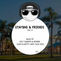 VA - Staybad & Friends, Vol. 5 [Staybad]