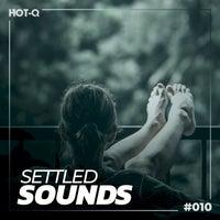 VA - Settled Sounds 010 [LW Recordings]