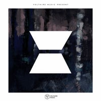 VA - Voltaire Music Pres X [VOLTCOMP1013] [FLAC]