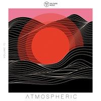 VA - Voltaire Music Pres. Atmospheric, Vol. 13 [VOLTCOMP996] [FLAC]