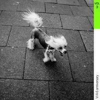 VA - Panal Records - V.A. (6 Anniversary), Vol. 3 [Panal Records]