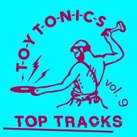 VA - Toy Tonics Top Tracks, Vol. 9 [Toy Tonics]