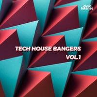 VA - Tech House Bangers Vol.1 [RI005]