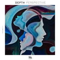 VA - Depth Perspective Vol. 19 [VMCOMP760] [FLAC]