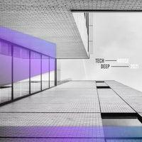 VA - Tech House Deep 2021 [Bacci Bros. Records]
