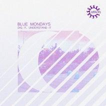 Blue Mondays, William Djoko, Gigi Masin - Dig It, Understand It