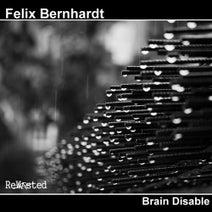 Felix Bernhardt, Sebastian Groth - Brain Disable