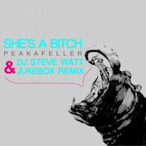 Jukebox, Peakefeller, DJ STEVE WATT - She's A Bitch