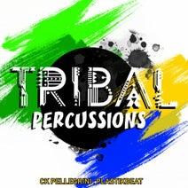 CK Pellegrini, Plastikbeat - Tribal Percussions