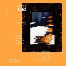 Conceptual - Null Respekt LP