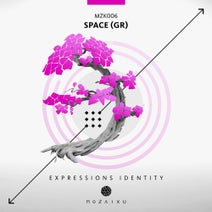 Space (GR) - Expressions Identity