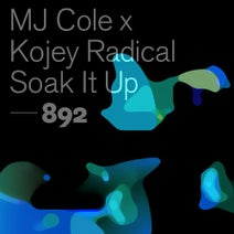 MJ Cole, Kojey Radical - Soak It Up