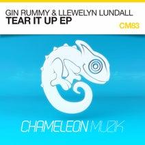 Llewelyn Lundall, Gin Rummy - Gin Rummy & Llewelyn Lundall - Tear It Up EP