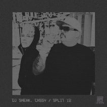 DJ Sneak, Cassy - Split 12