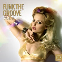 Wendy Lewis, Andrade, Avenir, Gabriele Mancino, Big Will Rosario, Harmony Funk, Moody Groova, J, D, Jose 'JR' Jimenez, Paolo Blanda, Paolo Faz, Pedro Campos, Quantizers, The Road Central Project, Quell, Benito's Timp - Funk The Groove, Vol. 3