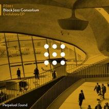 Black Jazz Consortium, Slikk Tim, Fred P, Mr. G - Evolutions EP