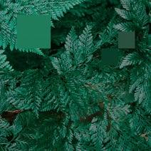 Nebraska, Laurence Guy - Metaphor to the Floor EP