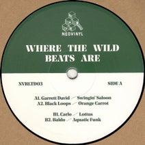 Baldo, Carlo, Black Loops, Garrett David - Where The Wild Beats Are