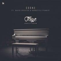 Coone, David Spekter, Hardstyle Pianist - Faye (Acoustic Version)