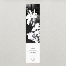 Umwelt - Strange Attractor EP - Digital