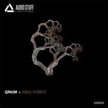 QNUM - Soul Forest